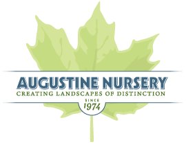 Augustine Nursery sponsors Fall for Art
